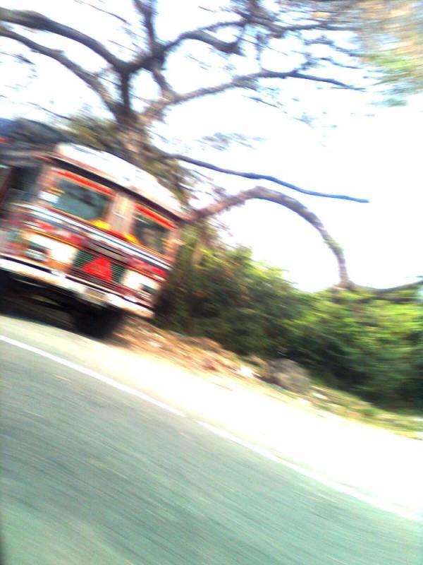 Copyright Indira Mukherjee