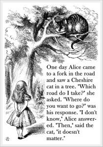 alice cat 2