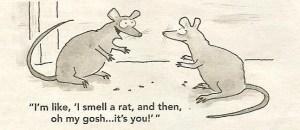 i-smell-a-rat-001