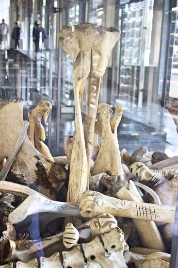 Constitution Hill, bones